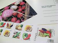 postcard to... (c)2007 AEC